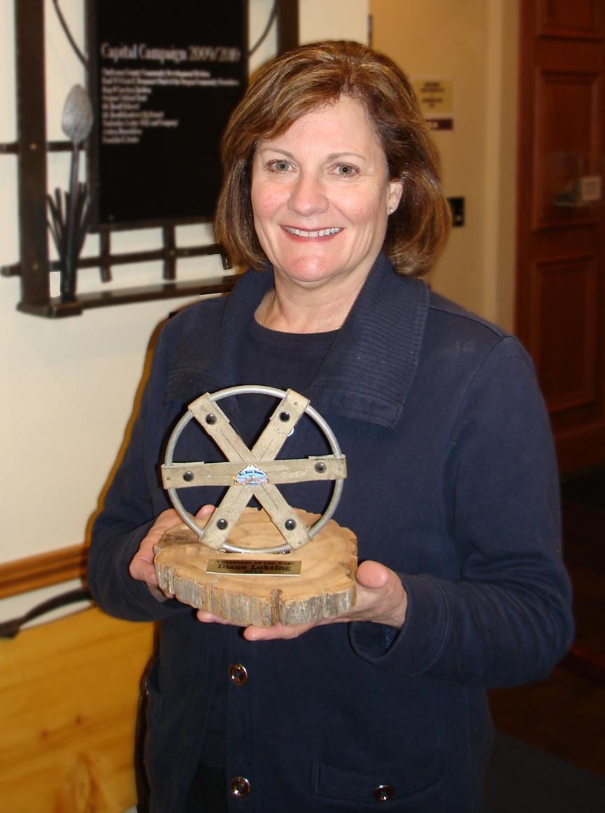 volunteer-of-the-year-2012