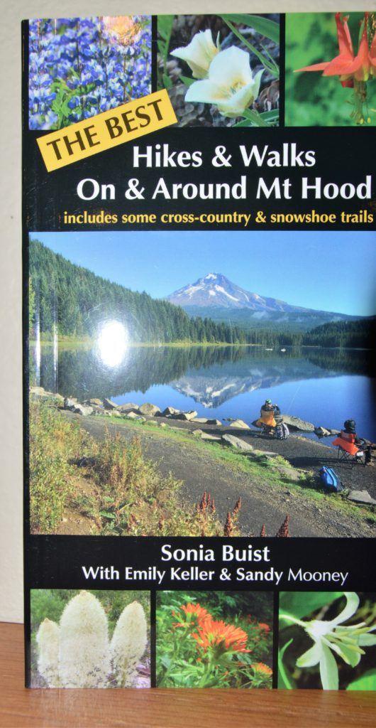 The Best Hikes & Walks On & Around Mt Hood